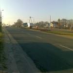 bratki-20100326