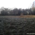 boisko Łęka