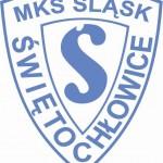 logo śląsk świętochłowice